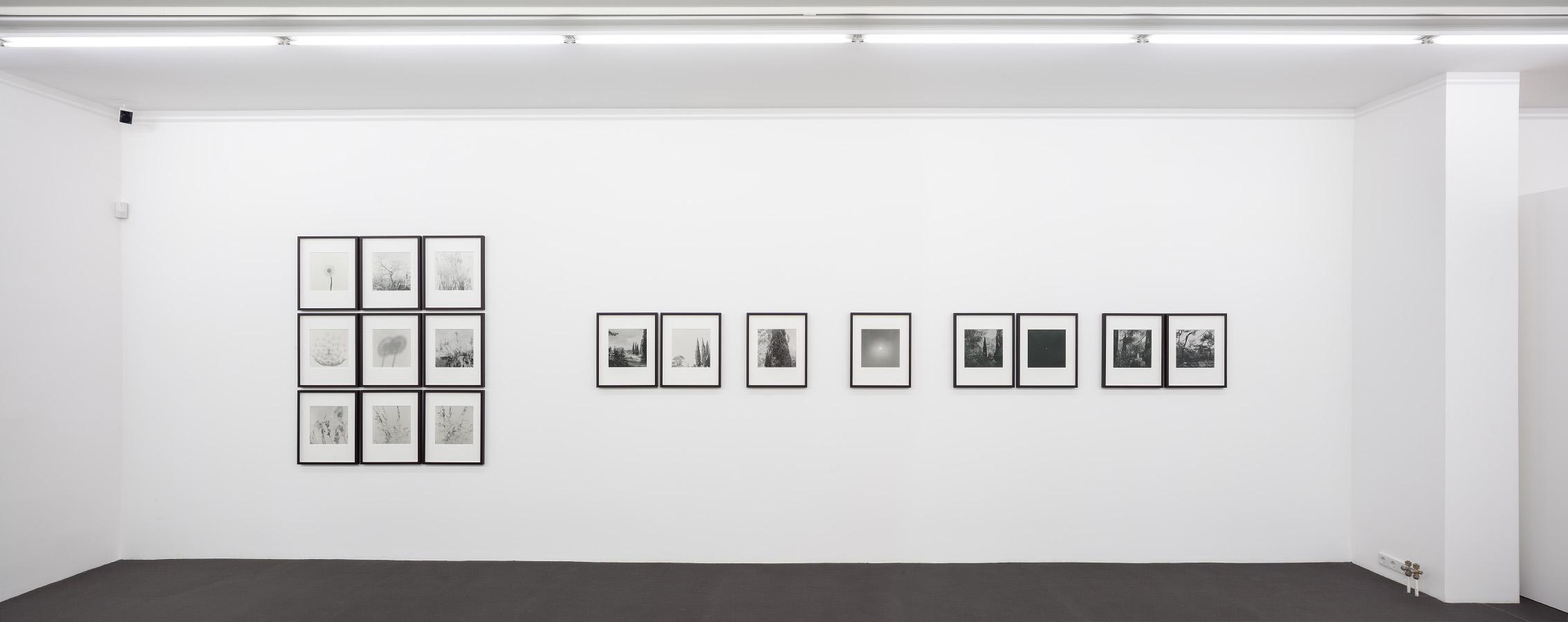 Kehrer Berlin Galerie, Ausstellung Lob der Wildnis | Serial Landscapes, 7. Februar bis 29. März 2015. © Foto: Henning Rogge