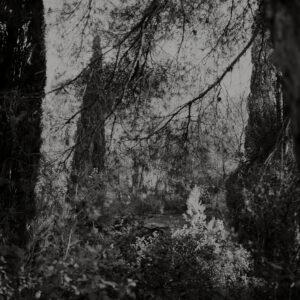 © Arno Schidlowski, Der Sonne Mond #48, 2011–2013. Barytprint, 27 x 27 cm. Courtesy Galerie Jo van de Loo und Kehrer Berlin Galerie.