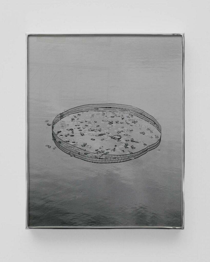 Pond I, from the series Utopian Waters, 2017, Daniel Shea/Webber